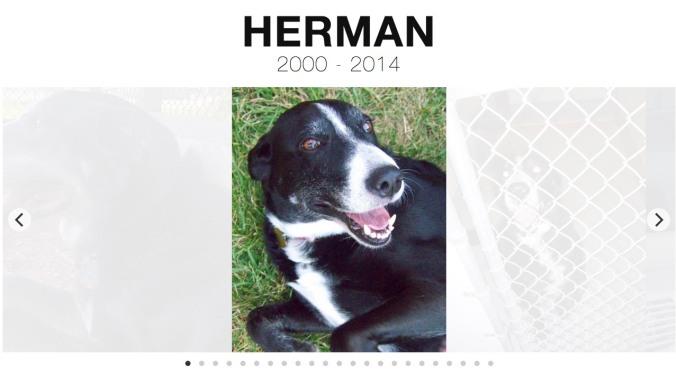 Herman 2000-2014