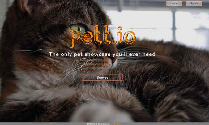 pettio splash image